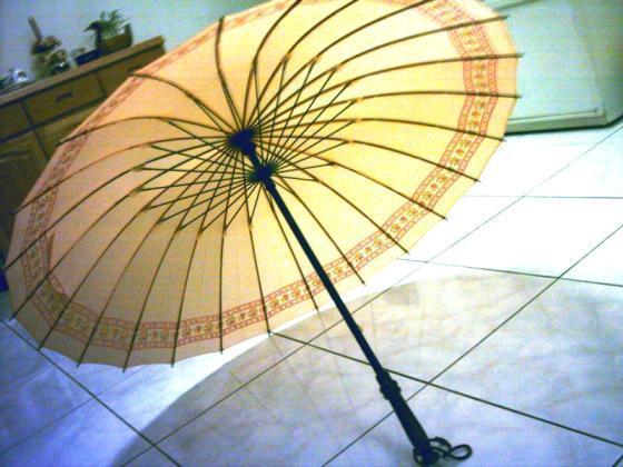 伞的骨架用不断,就像做人的志气,能够断吗?