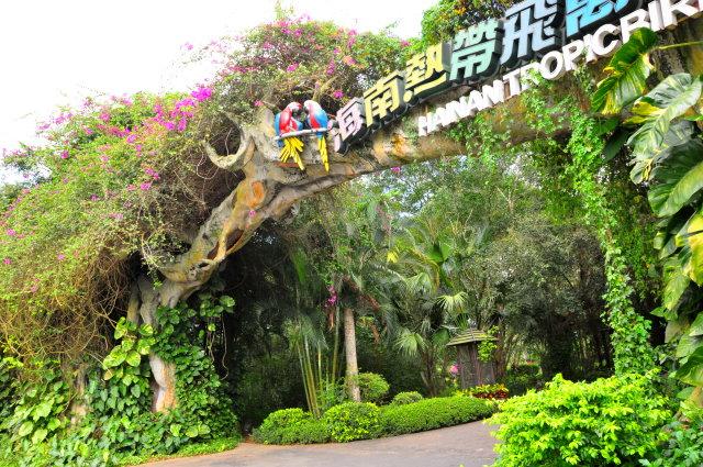 总面积大约600公亩,是海南省最早开放的热带植物园 园内植物品种